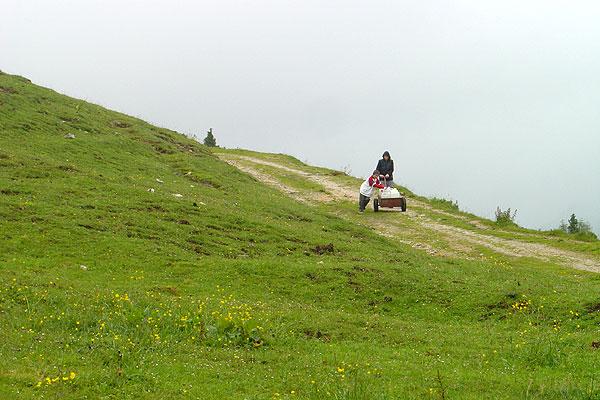 Goeriacheralm Austria