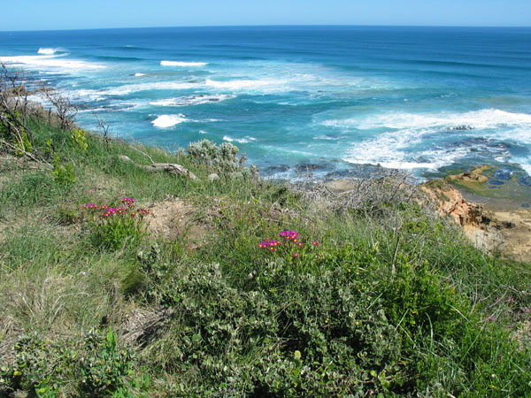 Point Nepean Australia