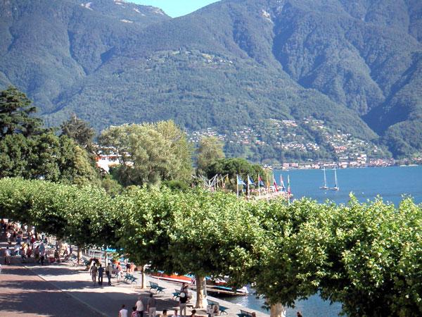 Ascona Swize