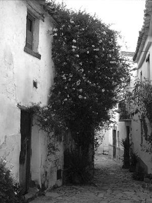 Castellar de la Frontera Spain